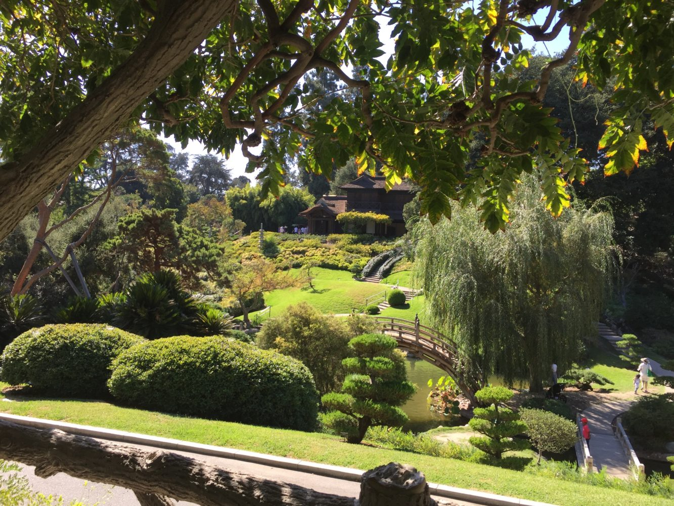 The best toddler approved parks and gardens in LA.