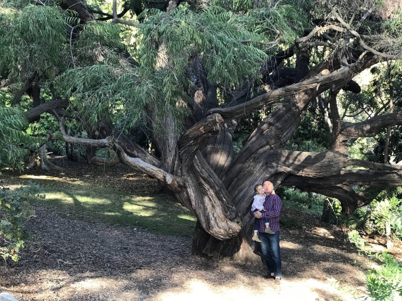 Ucla Botanical Garden A Toddler Friendly Review